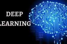 Deep Learning Online Course